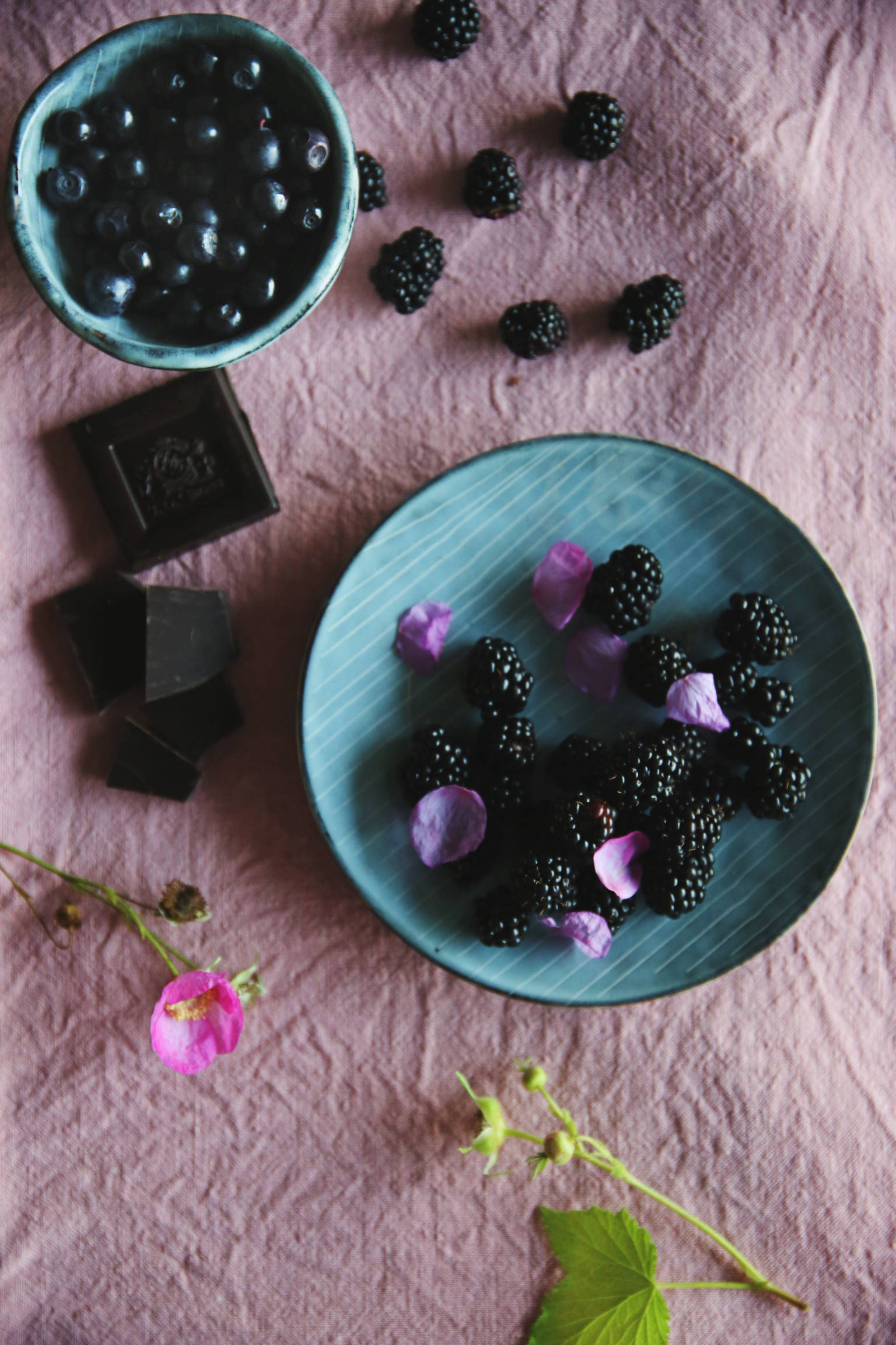 Blackberries and blueberries | Thais FK | Due fili d'erba | Two blades of grass