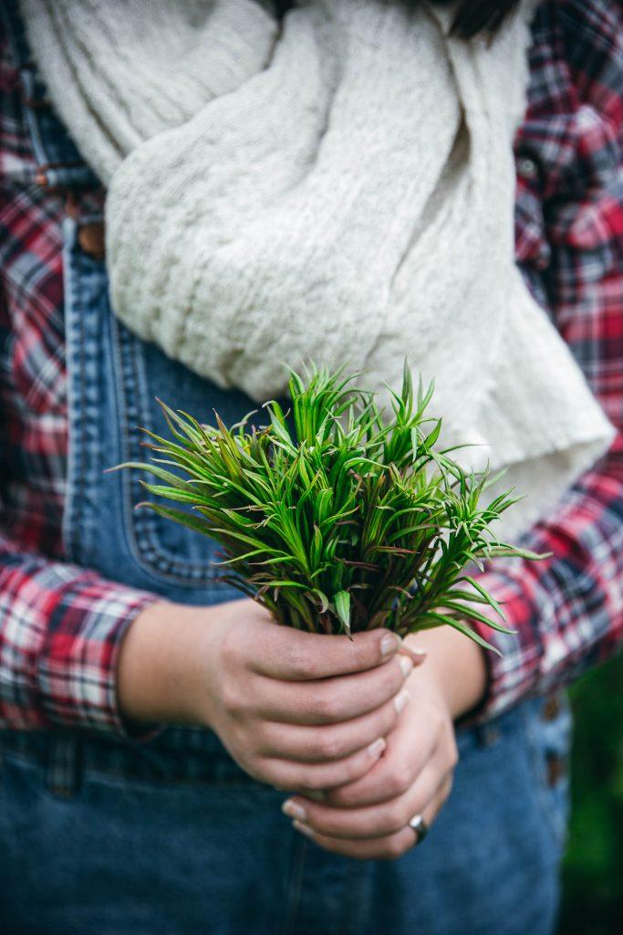 Fireweed shoots | The Adagio Blog | Thais FK Photographer Recipe Developer & Content Creator | Valokuvaaja Ruokataiteilija & Sisällöntuottaja Thais FK